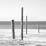 Les 4 de Capo Di Feno ©thierryraynaud