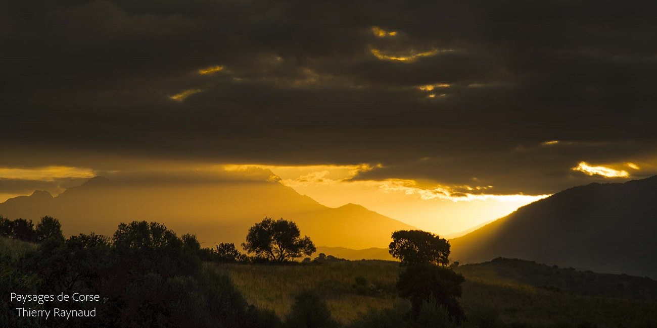 La montagne corse et le monte d'oro a vizzavona
